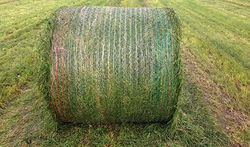 Continuous Baling test after the Yellow Revolution introduction