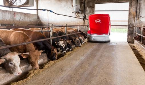 Research – Performance of beef cattle farms after implementation of Lely Vector