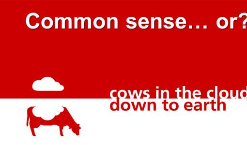 Udder health: common sense?