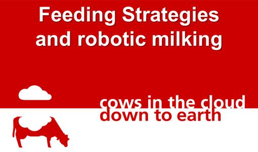 Feeding strategies and robotic milking