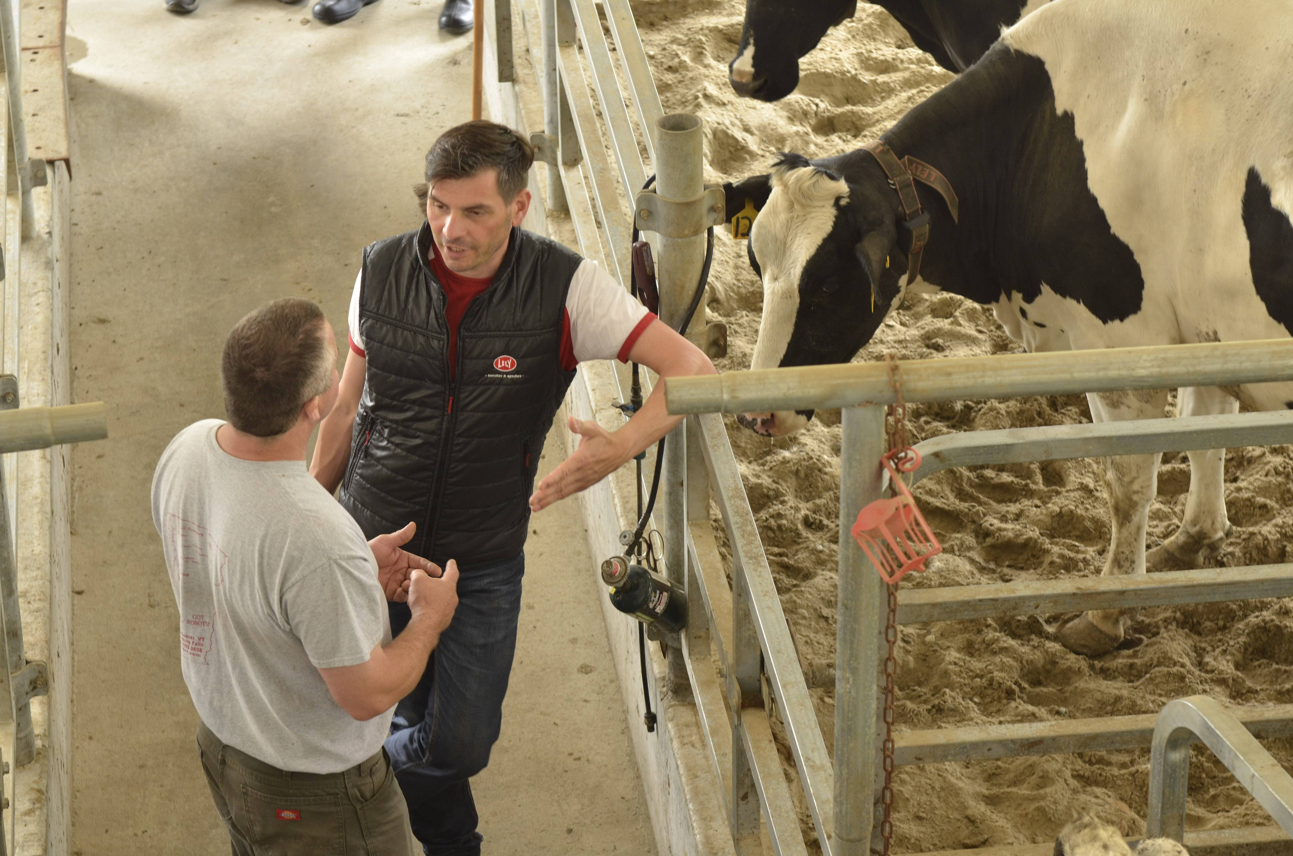The outstanding on- and off-site support offered through Farm Management Support has confirmed, yet again, that choosing Lely was the best option for the Sweet Farm needs for milking robots and other barn products.