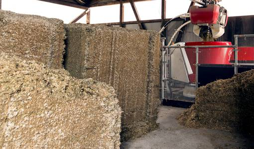Hot weather does not affect the quality of silage blocks