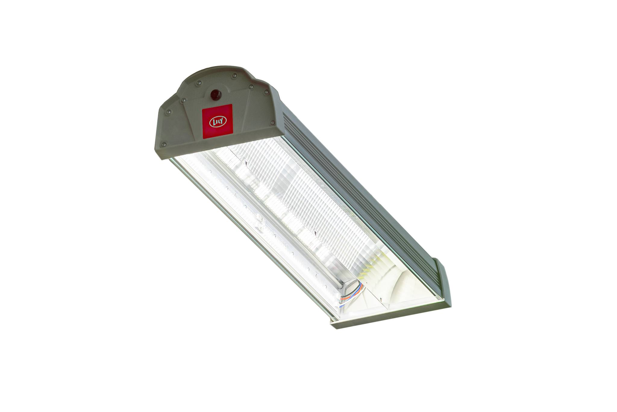 Lely - L4C LED barn light.jpg